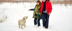 Couple walking dog in snow