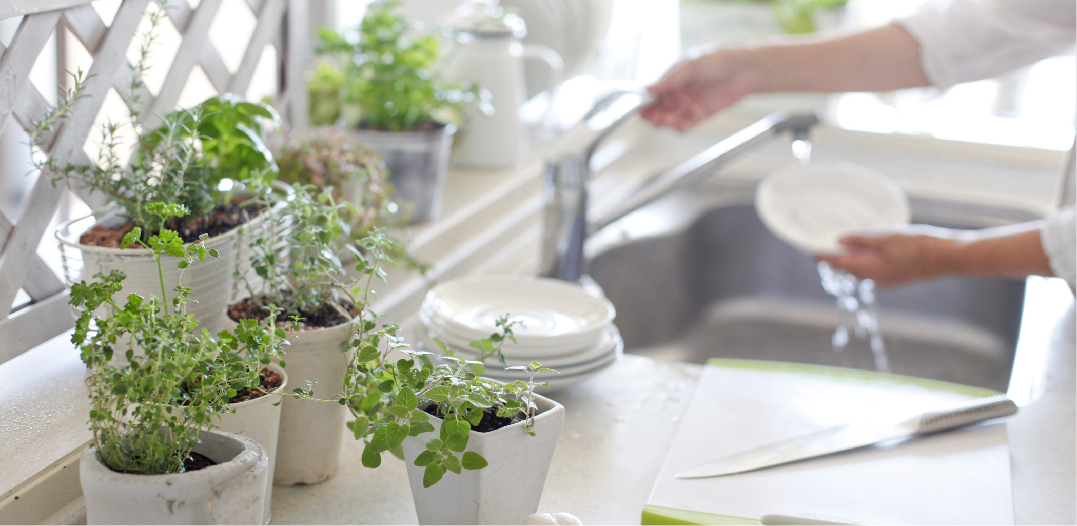 Planting Ideas - Welcome Spring with an Indoor Herb Garden!